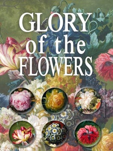 Image of Glory of the Flowers
