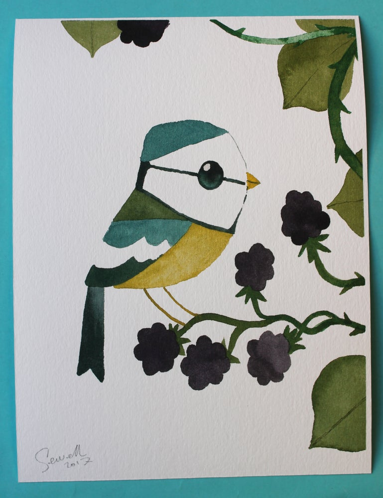 Image of Bramble picking Blue Tit