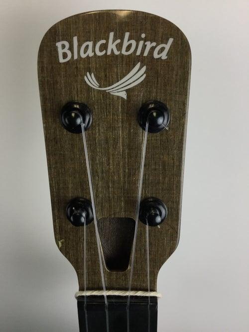 Image of Blackbird Clara Concert Ukulele