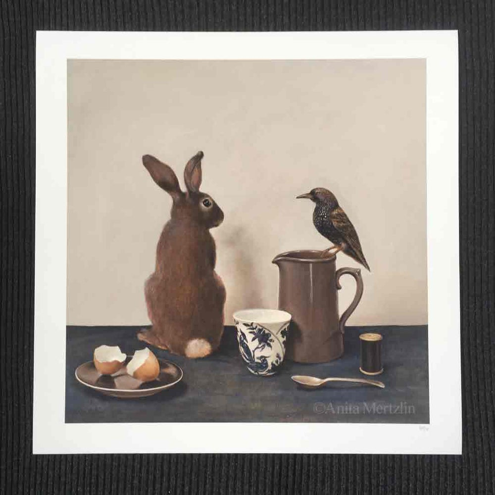 Image of 'and then the Starling said to the Rabbit'