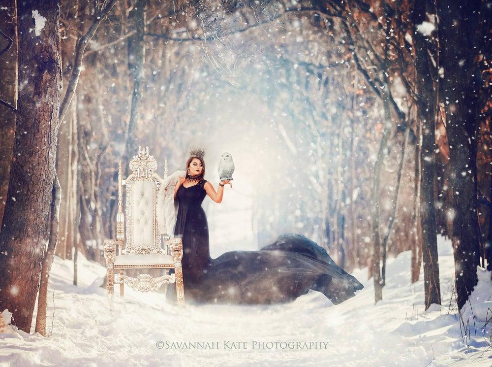 Image of Winter Wonderland Mini Set