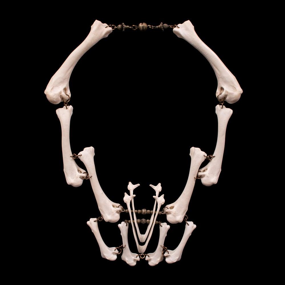 "Image of ""Kaza"" Chicken & Turkey Bone Necklace"