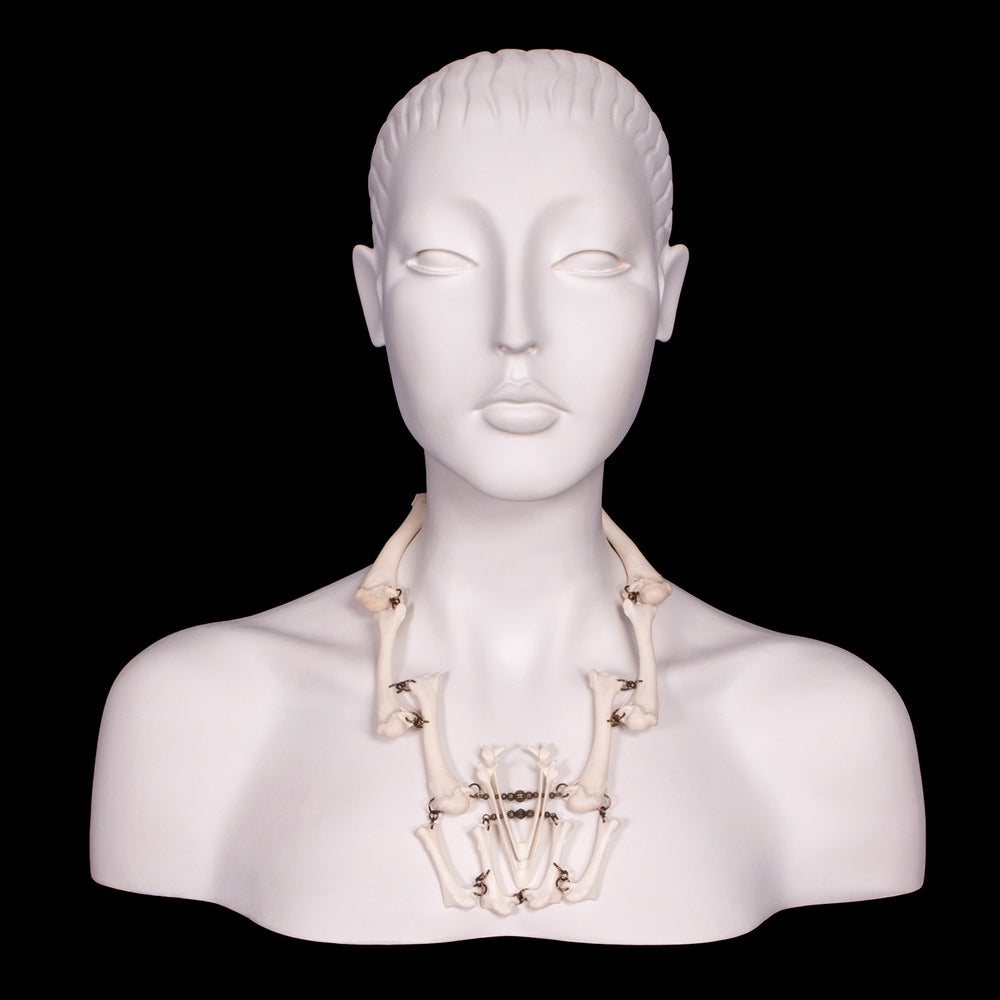 "Image of ""Kaza"" Chicken & Turkey Bone Necklace"