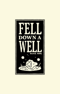 Image of Fell Down A Well