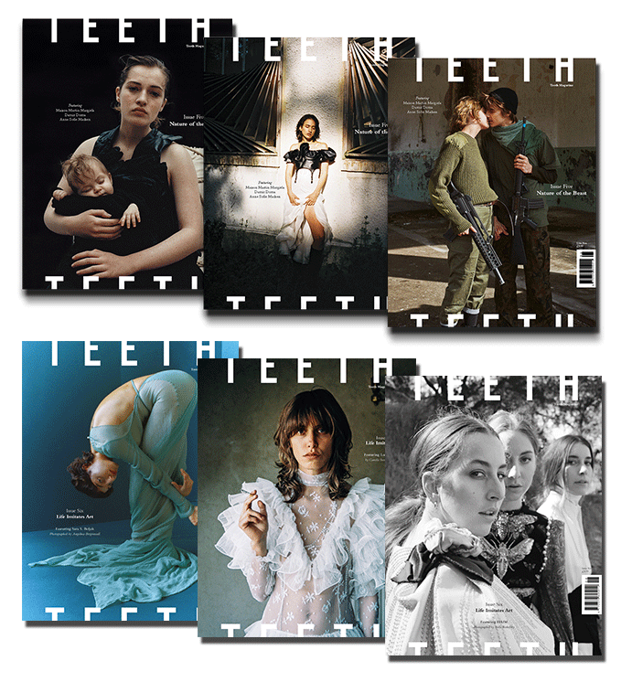 Image of 2017 Teeth Magazine Subscription Package (2 Issues)