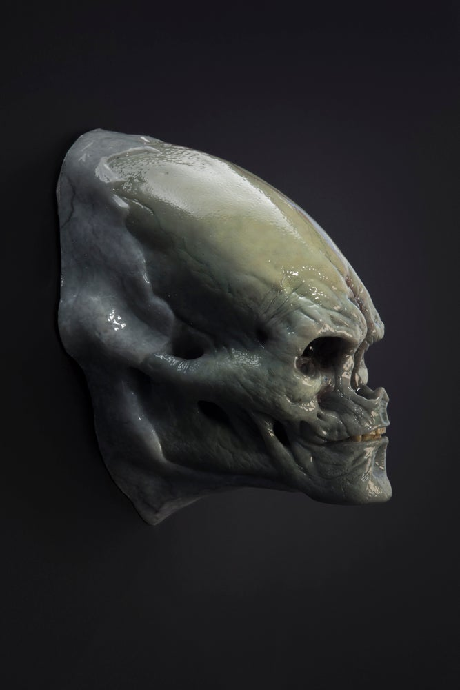 Image of Newborn Alien Face Design Maquette