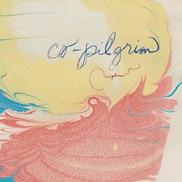 Image of Plumes - Vinyl LP  (2014)