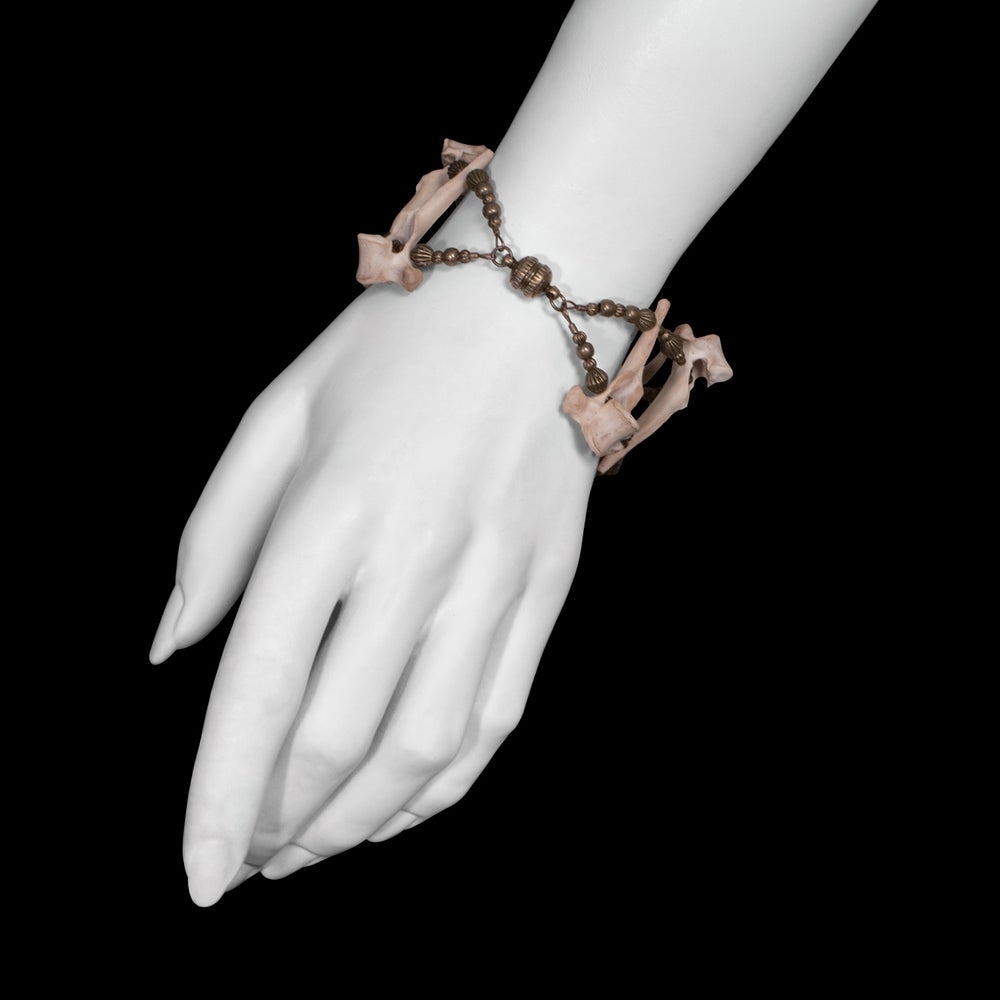 Image of Cat Vertebrae Bracelet