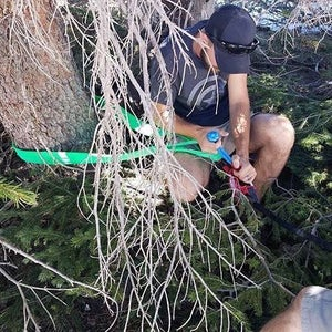 Image of Treaty Oak Offroad Tree Saver