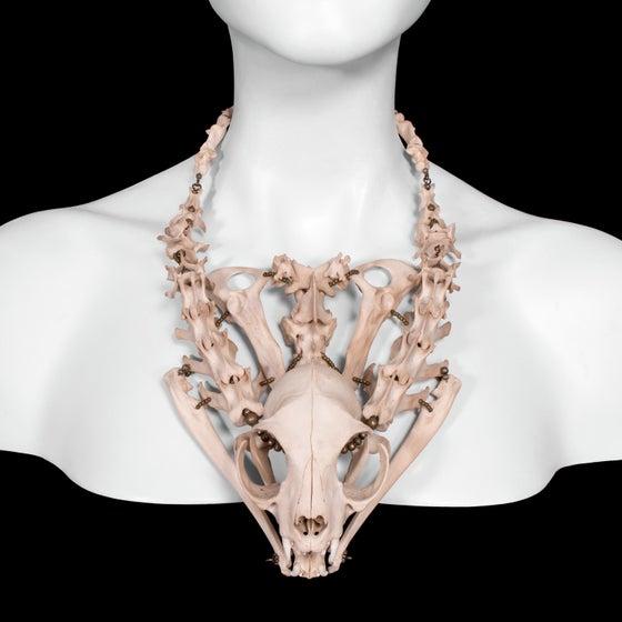 "Image of ""Cohen"" Cat Skull & Bone Necklace"