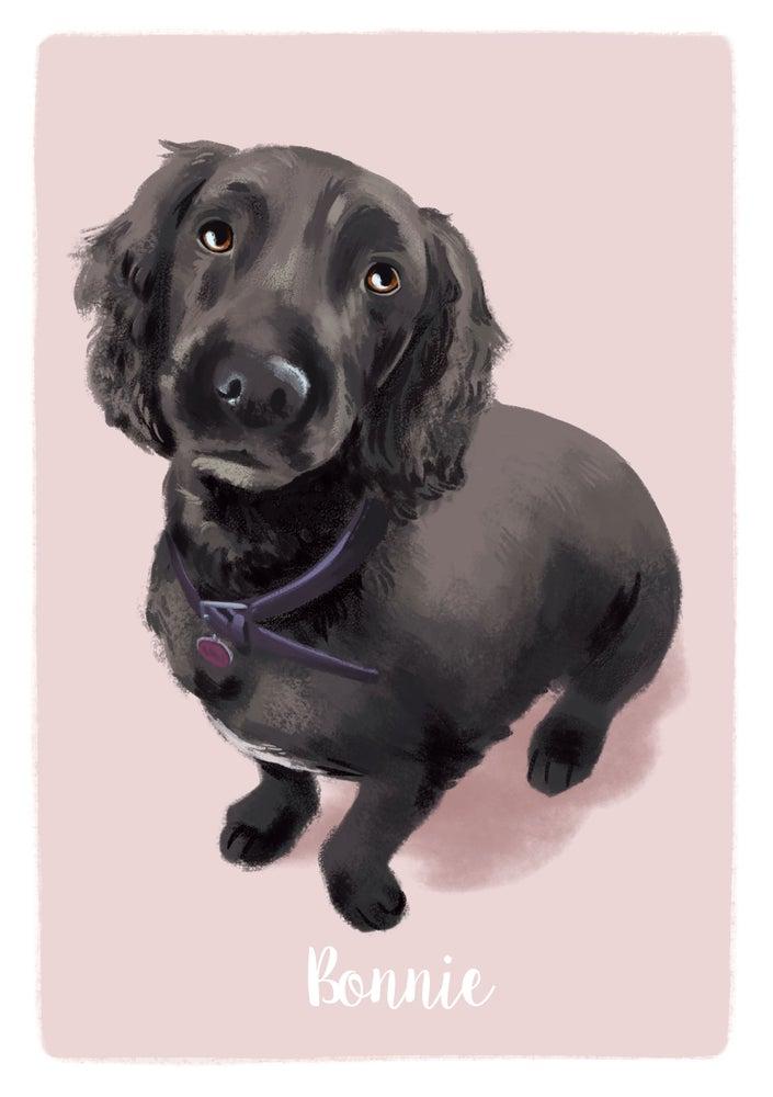 Image of Sample Portrait - Bonnie