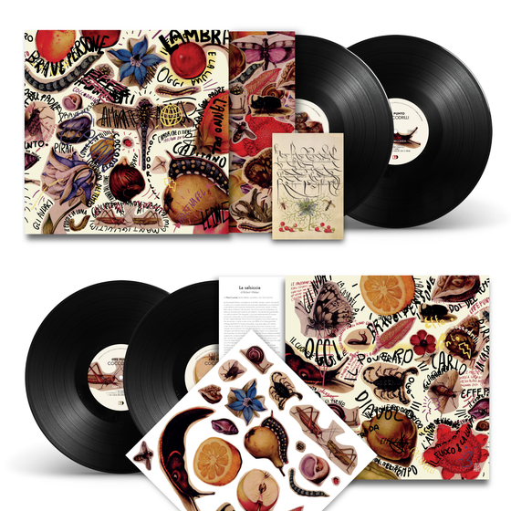Image of Coccodrilli - Double Lp ltd. edition with illustration stickers, card and digital download code