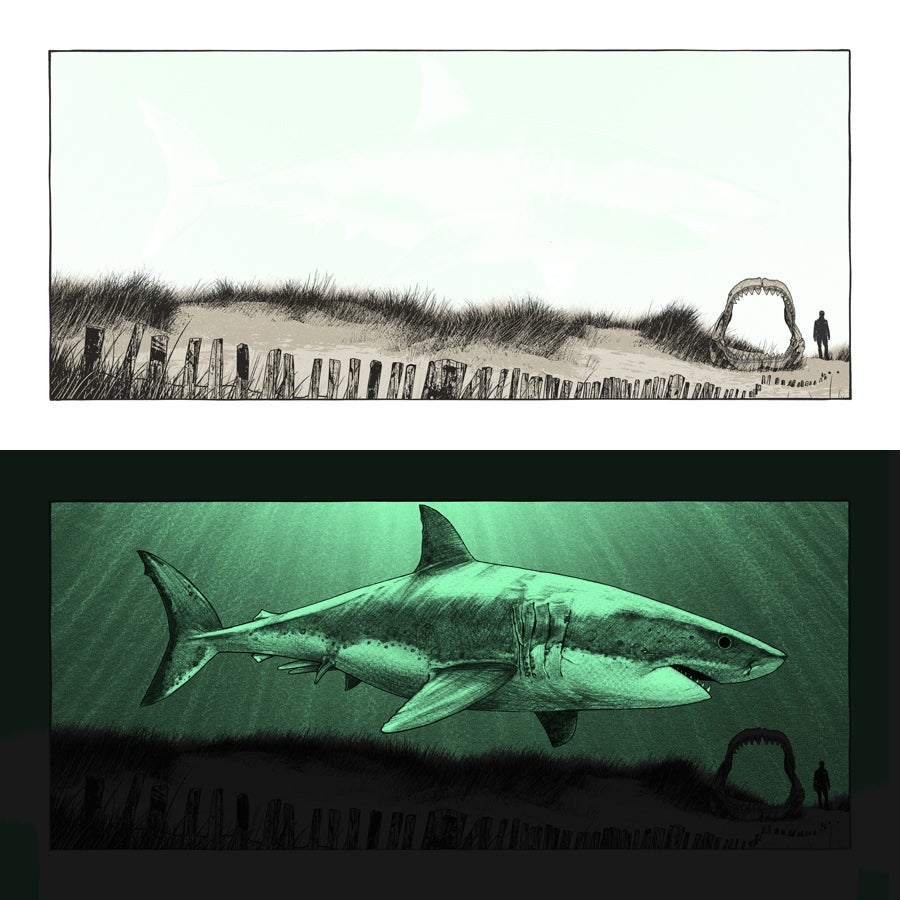 """Image of """"What Once Was - Megalodon"""" - only 2 left!"""
