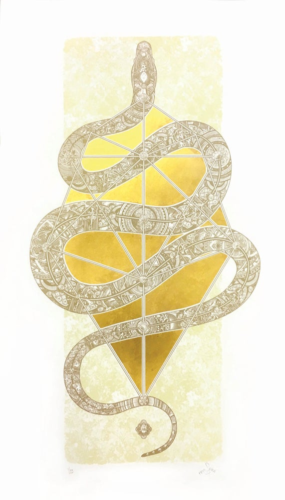 Image of The Diamond Headed Serpent