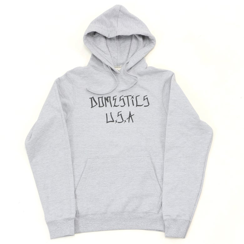 Image of DOMEstics. Andy Roy Lettering Hoody