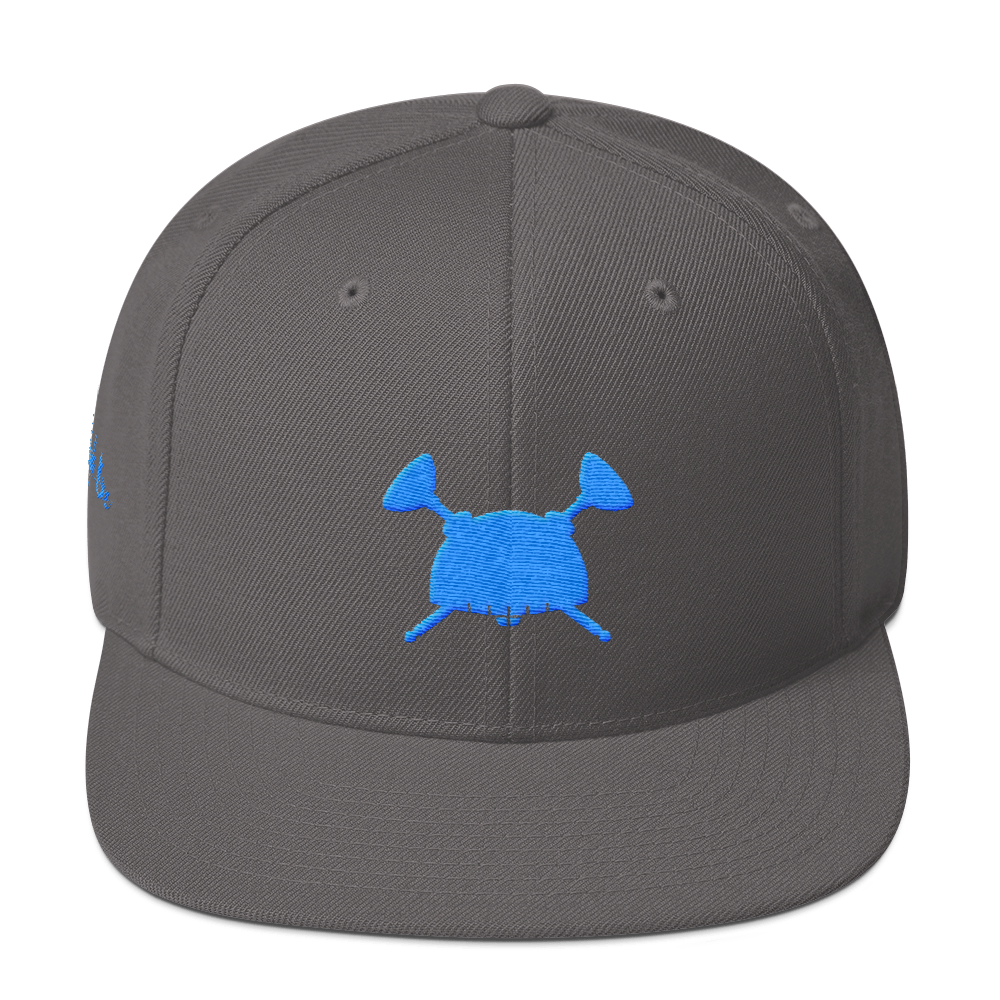 Image of Dream Hero Snap Back Dark Gray