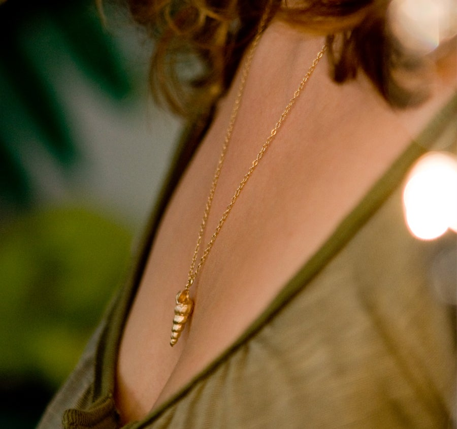 Image of Golden horn necklace