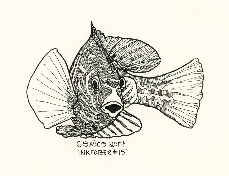 Image of Inktober #15 - Fish