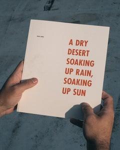 Image of A Dry Desert Soaking Up Rain, Soaking Up Sun