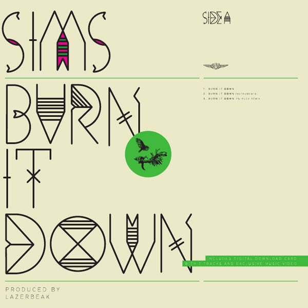 "Image of Burn It Down (12"" Vinyl) - Sims"