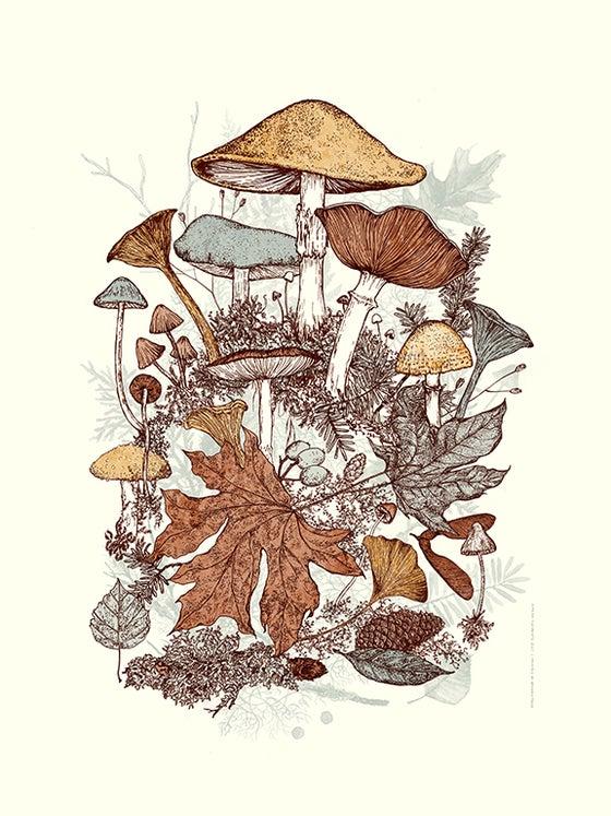 Image of Mushroom Bouquet