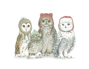 Image of Winter Owls in Winter Hats