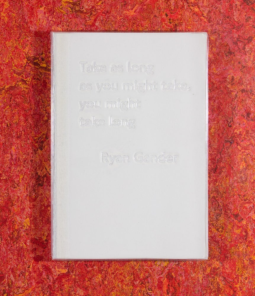 Image of Take as long as you might take, you might take long <br />— Ryan Gander