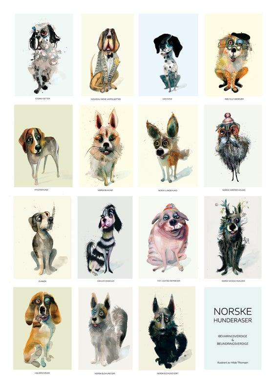 Image of Norske hunderaser - Bevaringsverdige og beundringsverdige