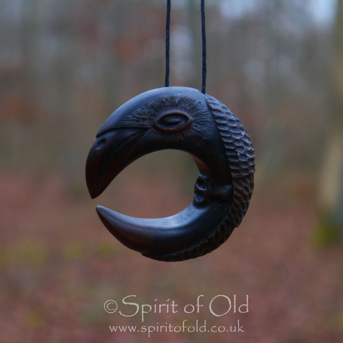 Image of Irish Raven Moon pendant (PE1239)