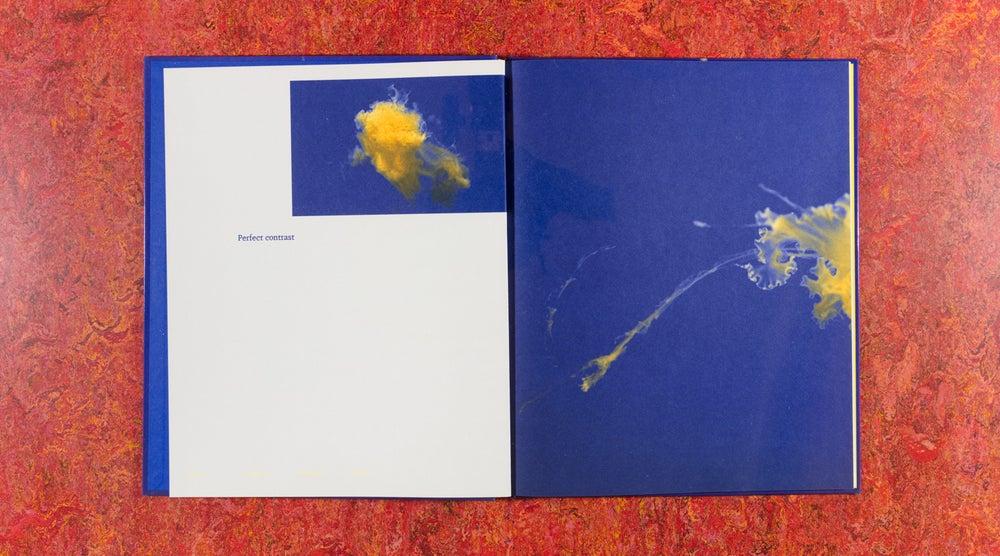 Image of Pulmo Marina <br/> — Aurélien Froment
