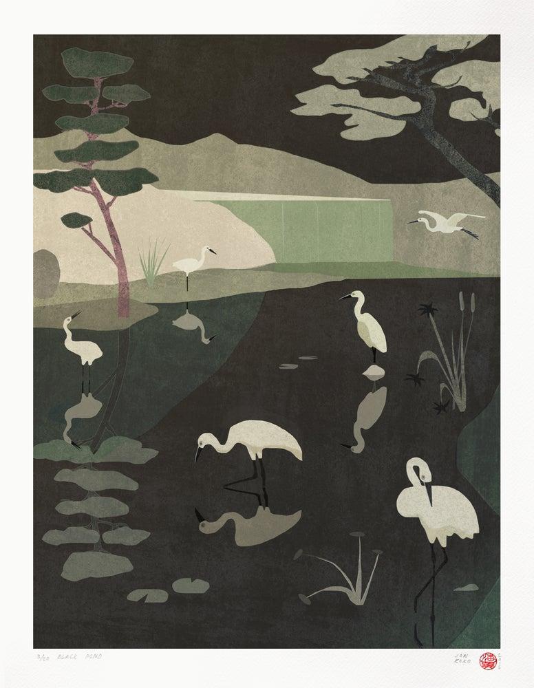 Image of Black Pond