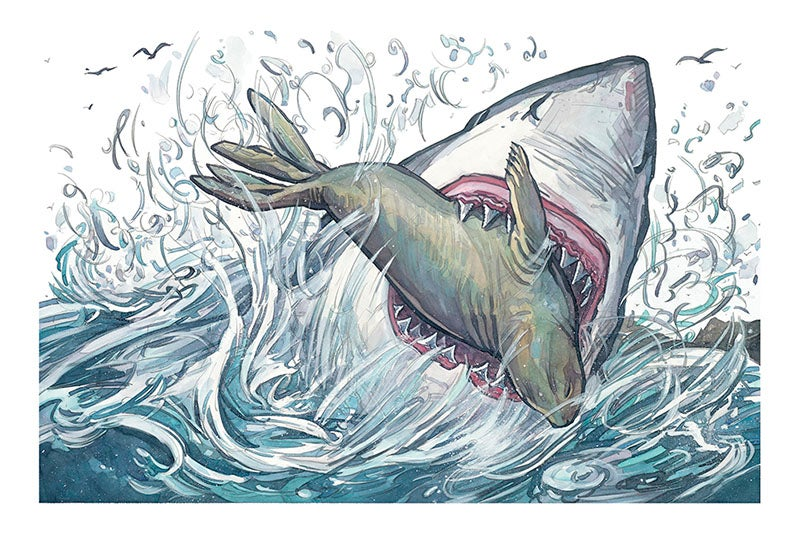 Image of Seal Strike Giclée Print 16 x 24 from NEIGHBORHOOD SHARKS