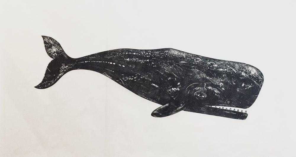 Image of Whale II