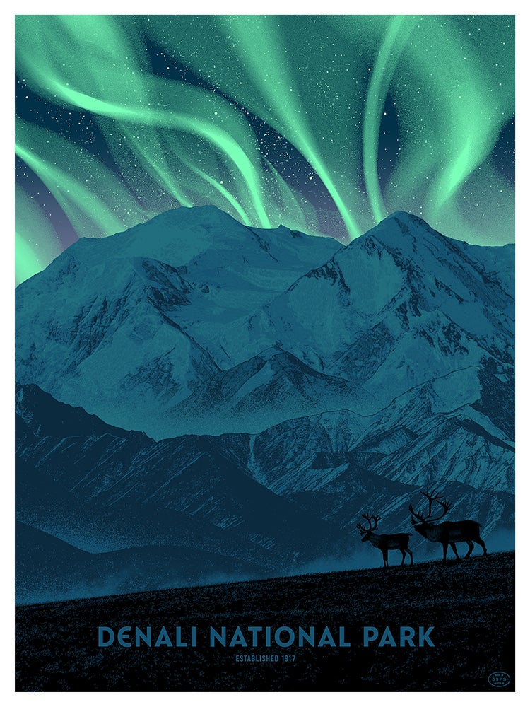 Image of Denali National Park - NIGHT - only 3 available