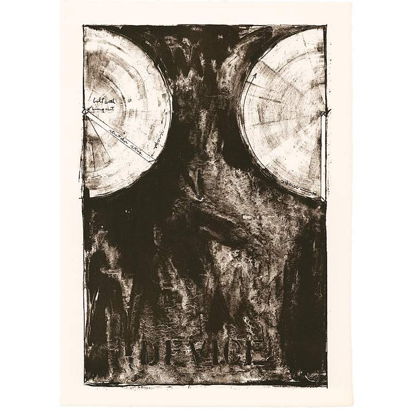 Device, Jasper Johns