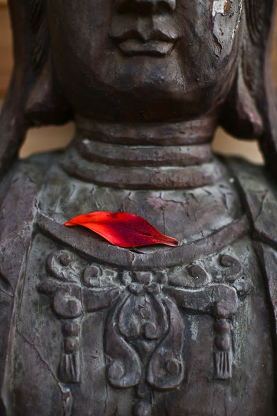 Image of Sacred Statue w/ Flower Petal (2 images) - digital download