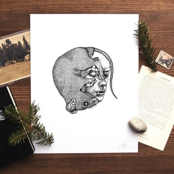 Image of Camus (The Plague) Print