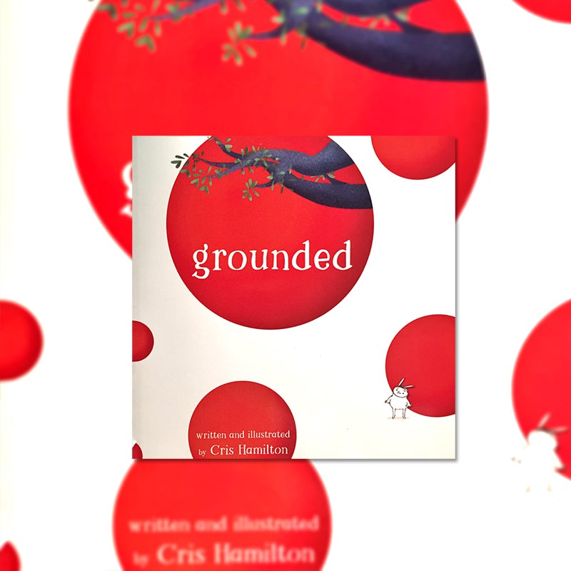 Image of Grounded - another picture book