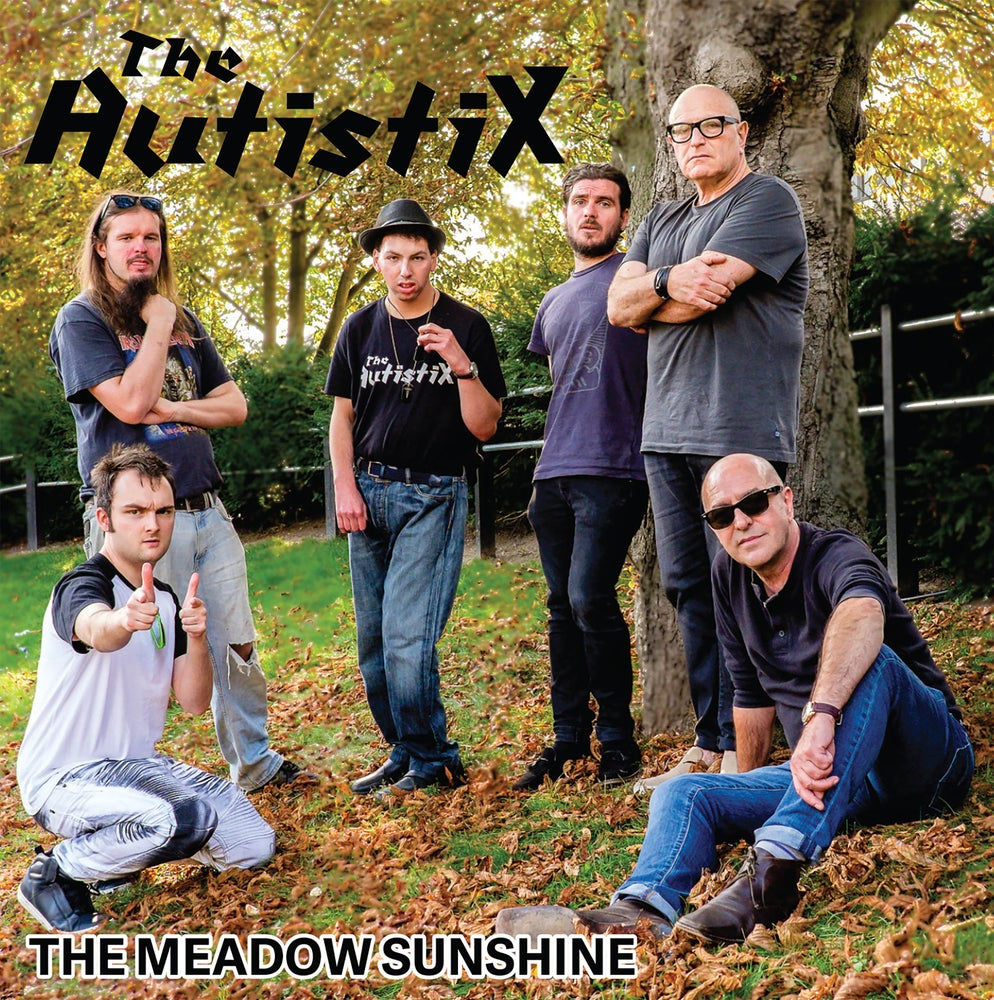 Image of The Meadow Sunshine