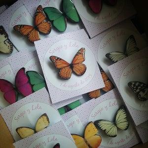Image of Broches mariposa variadas