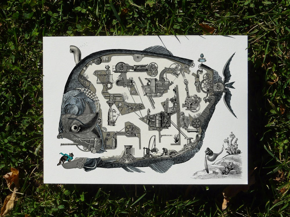 Image of Whale maze