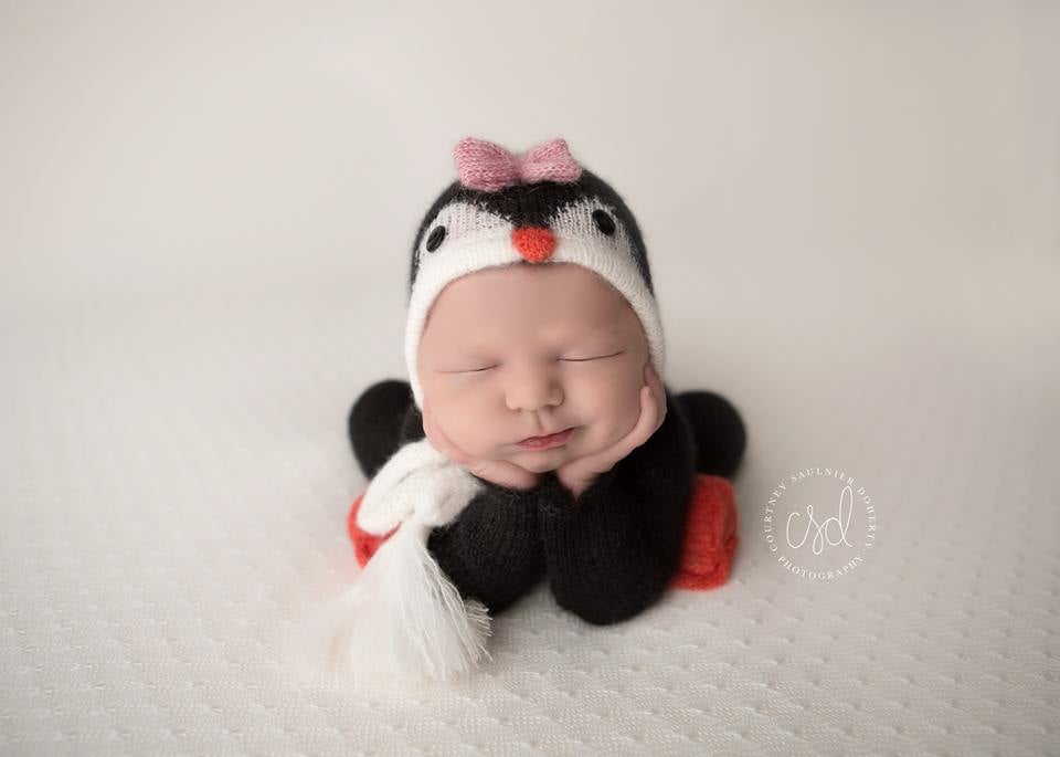 Image of **NEW** Little Penguin Jammy