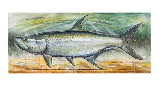 Image of Florida Tarpon