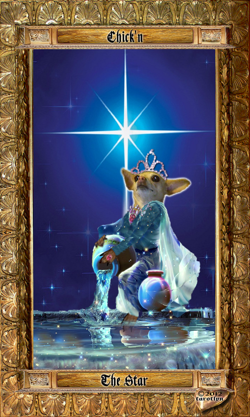 Image of Medieval Chihuahua Tarot
