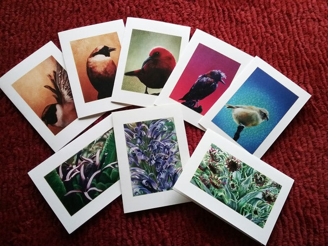 Image of Native Species Notecards (5x7, set of eight)