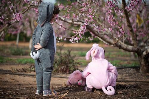 Image of Gray Bunny Costume  תחפושת ארנב אפור