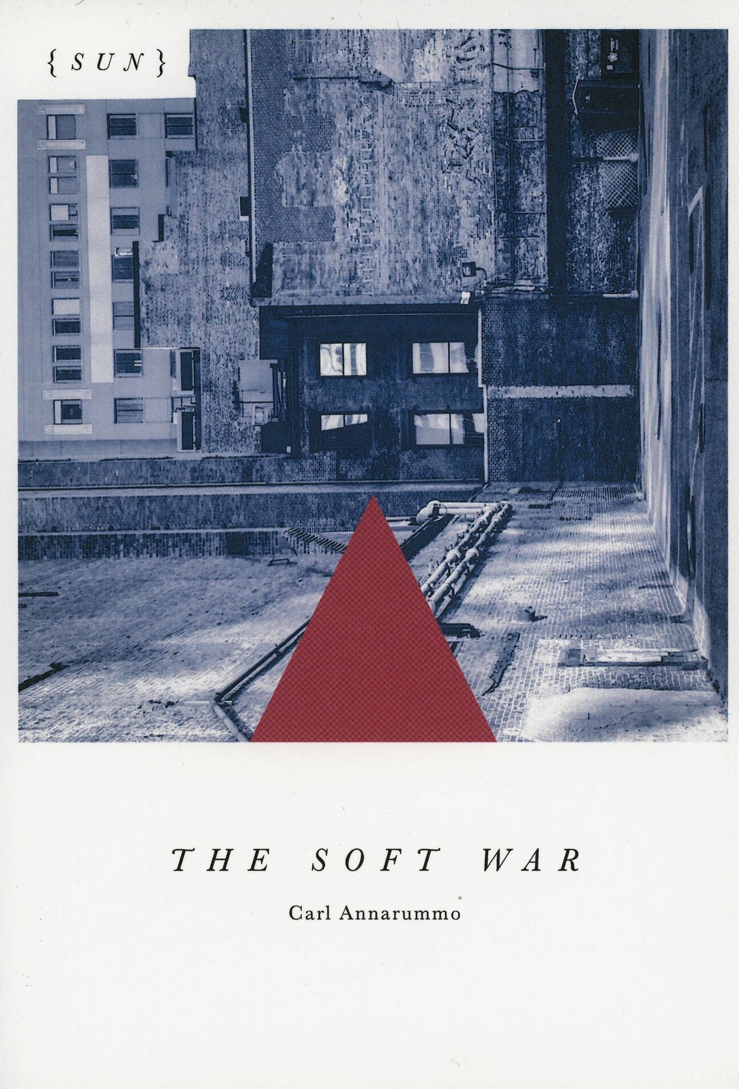 Image of The Soft War by Carl Annarummo
