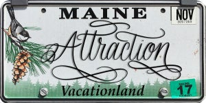 Image of Maine Attraction