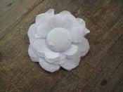 Image of {blossom}