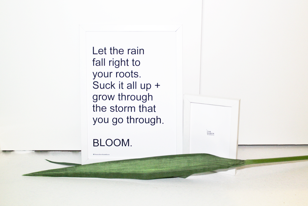 Image of Bloom - FRAMELESS A4 DECOR PRINT